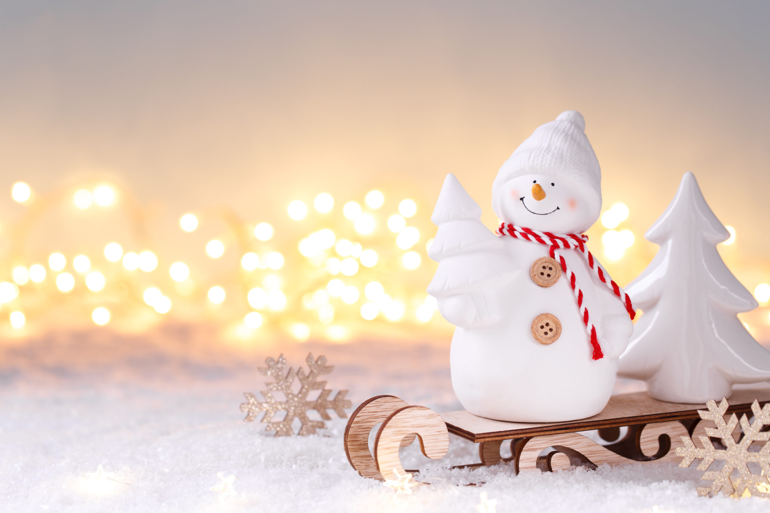 Snowman toy on the sledge